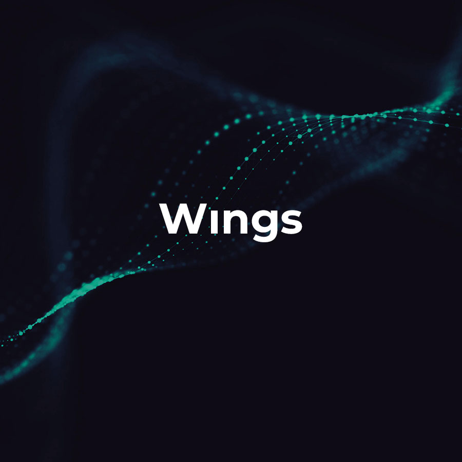Solutions Wings